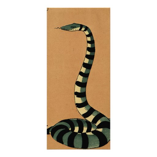 Snake - Antiquarian, Colorful Book Illustration Rack Card Template