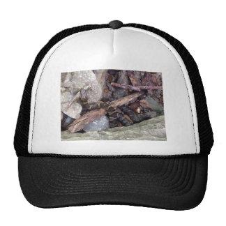 snake eating fish design hats