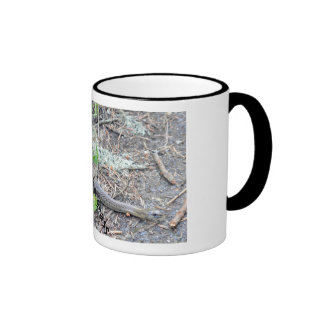 snake in the grass ringer mug
