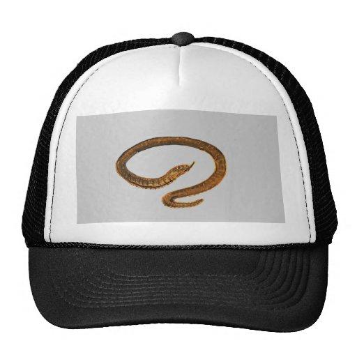 Snake painting trucker hat
