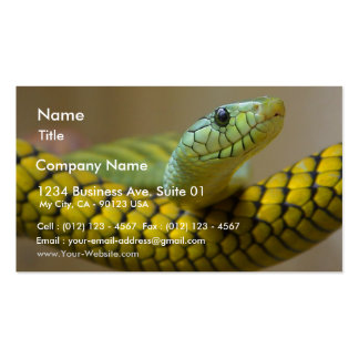 Snake Reptile Business Card Templates