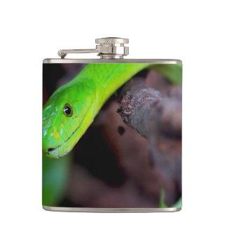 Snake Reptile Flask