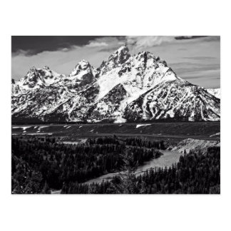 Snake River Curve - The Grand Tetons Postcard