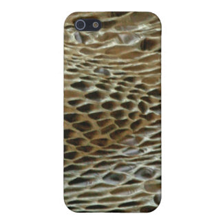 Snake Skin Boa2 Case For The iPhone 5