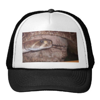 Snake Tounge Trucker Hats