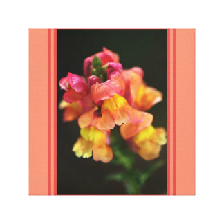 Snapdragon Flowers Wall Art by Bubbleblue Stretched Canvas Print