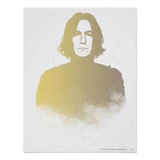 Harry Potter posters from Zazzle