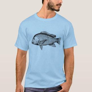 snapper tshirt