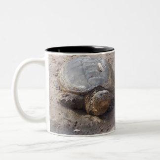 snapping turtle mug