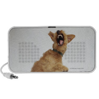 Snarling Dog Portable Speakers