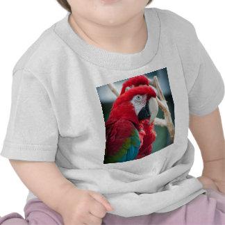 Sneaky Birds Tee Shirts