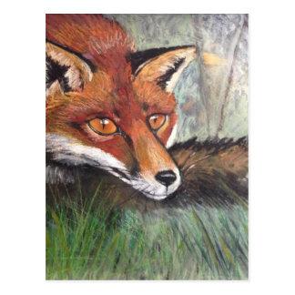 Sneaky Fox Postcard