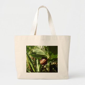 sneaky snail canvas bags