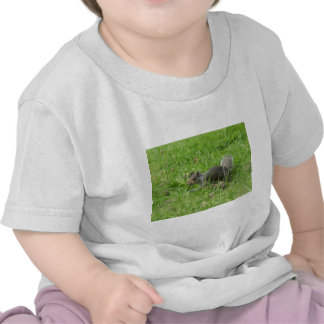 Sneaky Squirrel T-shirts
