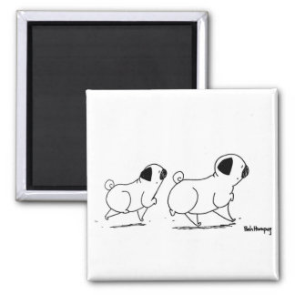 Snooty Pugs Square Magnet