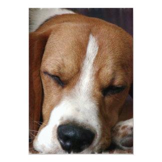 Snoozing Beagle Invitation