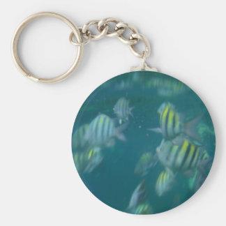 snorkeling key ring