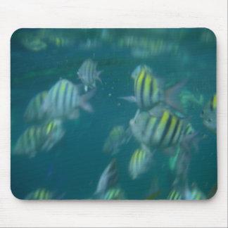 snorkeling mousepad