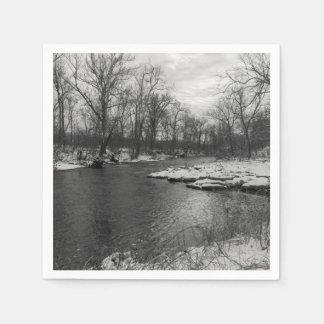Snow Along James River Grayscale Paper Serviettes
