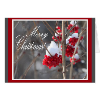 Snow and berries Christmas card