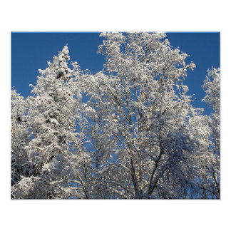 Snow and Ice Encrusted Winter Treescape Poster