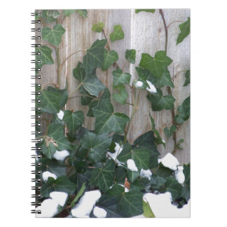 Snow and Ivy Notebook