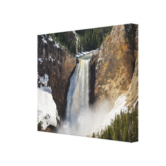 Snow at Lower Falls of the Yellowstone Canvas Prints