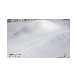 Snow Bank Gallery Wrapped Canvas