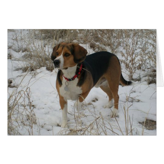 Snow Beagle Winter Greeting Card - Hunting Hound
