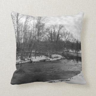 Snow Beauty James River Grayscale Cushion