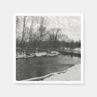 Snow Beauty James River Grayscale Disposable Serviette
