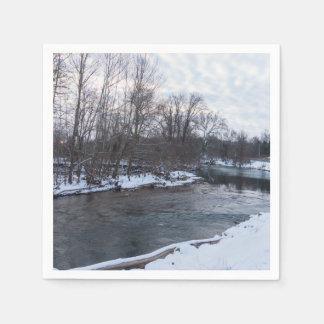 Snow Beauty James River Paper Serviettes
