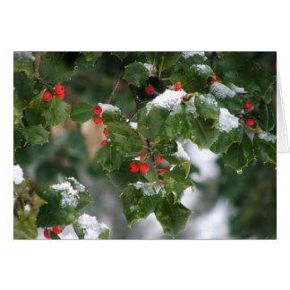Snow Berries Greeting Cards