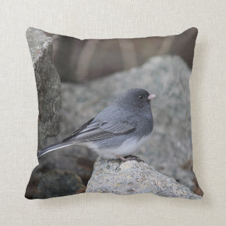 Snow bird perched on a stone wall cushion
