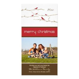 Snow Birds Merry Christmas Photocard (red) Picture Card