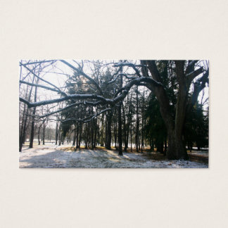 Snow Branches Business Card
