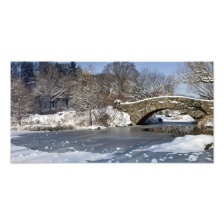 Snow Bridge and Ice Central Park Photo Print