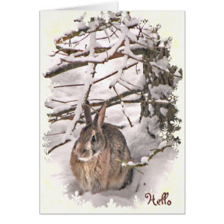 Snow Bunny Rabbit Thinking of You Card