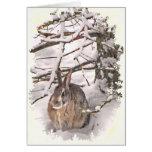 Snow Bunny Valentine