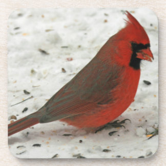 Snow Cardinal Beverage Coasters