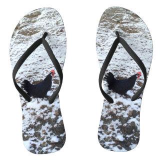 Snow chicken flip flops