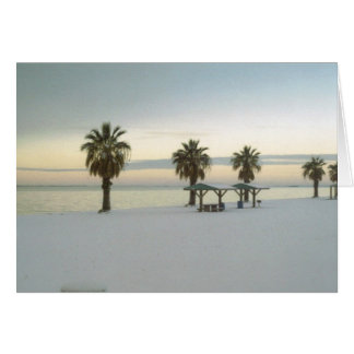 Snow-covered Bayfront card