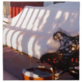 Snow covered bench napkin