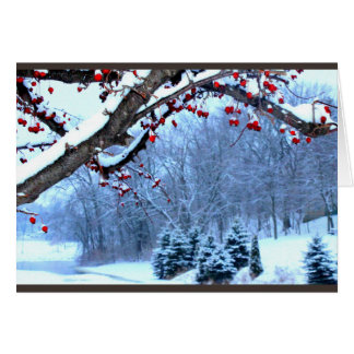 Snow Covered Berry Trees River Scene Card