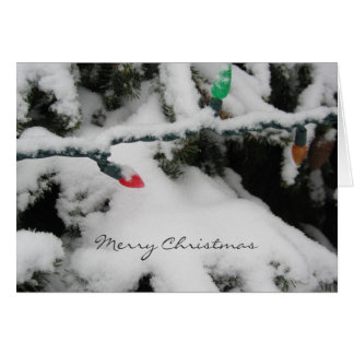 Snow Covered Branches with Christmas Lights Card