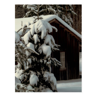 Snow Covered Cabin Postcard