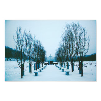 Snow-Covered Cemetery Photo Print