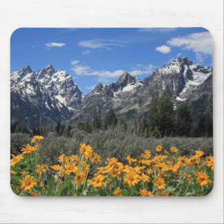 Snow Covered Grand Teton Range with Yellow Flowers Mouse Pad