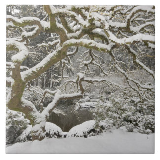 Snow-covered Japanese maple 2 Large Square Tile