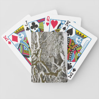 Snow-covered Japanese maple 2 Bicycle Poker Cards